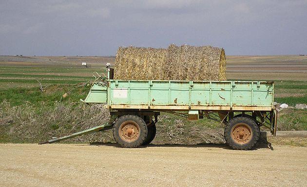 ekologiskt jordbruk dating