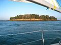 Courants sortie du Golfe du Morbihan.jpg