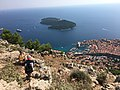 Croatie, Dubrovnik, île de Lokrum (33356467858).jpg
