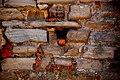 Cromatismi murari (526074718).jpg