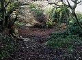 Crossing Penn Brook, Staffordshire - geograph.org.uk - 617087.jpg