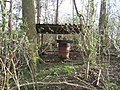 Curiosity in woods near Cuddington - geograph.org.uk - 388522.jpg