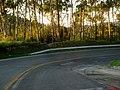 Curvas fechadas na descida da serra na Rodovia Engenheiro Constâncio Cintra (SP-360) em Amparo. - panoramio.jpg