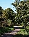 Cycle path, Ringwood - geograph.org.uk - 1540878.jpg