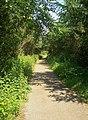 Cycleway-Path at Parc Slip Nature Reserve - geograph.org.uk - 845227.jpg