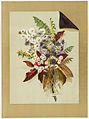 Daisies and Autumn Leaves and Ferns (Boston Public Library).jpg