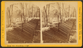 Dam for flooding logs, L. B. Curtis and Co's, by Jenney, J. A. (James A.).png