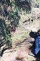 Davis Fall, Nepal-WLV-1763.jpg
