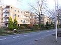 Delft - Delfgauwseweg - 2008 - panoramio - StevenL.jpg