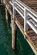 Detail of a pier in Diamond Harbour, New Zealand.jpg