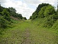 Disused Oxford-Bletchley Railway - geograph.org.uk - 211823.jpg