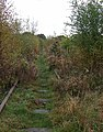 Disused Railway, Stockton Brook, Staffordshire - geograph.org.uk - 597950.jpg