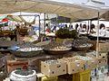 Djerba-Vielfalt-catlovers.jpg