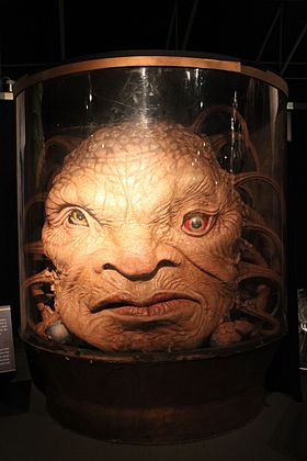 Image illustrative de l'article Face de Boe