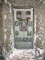 Dolaucothi trig point flush bracket. - geograph.org.uk - 354015.jpg