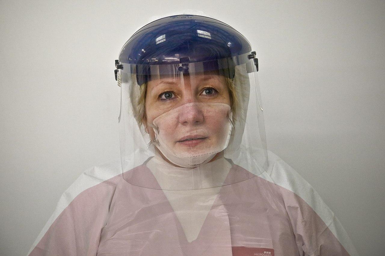 Геморрагическая лихорадка Эбола - Wikiwand