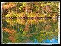 Douglas, MA 01516, USA - panoramio.jpg