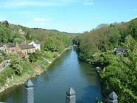 Downstream from the ironbridge - geograph.org.uk - 267024.jpg