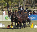 Dressage Driving at the World Equestrian Games 2010 (5118470400).jpg