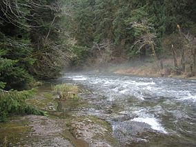 Drift Creek.jpg