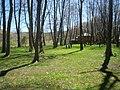 Drilon, Pogradec (40).jpg