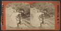 Drinking fountain, Prospect Park, from Robert N. Dennis collection of stereoscopic views.png