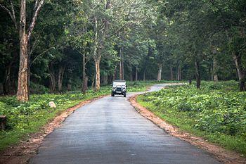 Driving through the Nagerhole National Park.jpg
