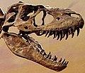 Drumheller 150 cropped.jpg