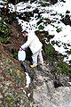 Ebenthal Quellenstrasse Quelle Wasserfassen 29012009 71.jpg