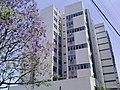 Edifício D'Argentum - Rua Gonçalves Dias, 66 - Brasil RS Canoas Centro - panoramio.jpg