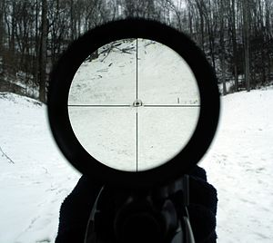 Telescopic sight - View through a 4x rifle scope.