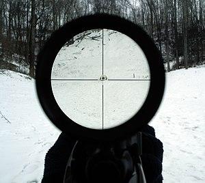 Telescopic sight - View through a 4x rifle scope.