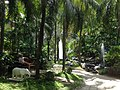 Edsa Shangri-La garden - panoramio.jpg