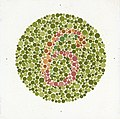 Eight Ishihara charts for testing colour blindness, Europe Wellcome L0059155.jpg