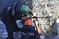 Emergenza ecoballe Golfo di Follonica - 50222568472.jpg