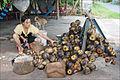 Exploitation des fruits du palmier à sucre (Vietnam) (6589355969).jpg