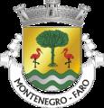 FAR-montenegro.png