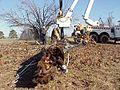 FEMA - 520 - Photograph by John Shea taken on 12-29-2000 in Arkansas.jpg