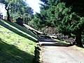 Fallen tree, Balgay Cemetery - panoramio.jpg