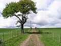 Farm track - geograph.org.uk - 435120.jpg