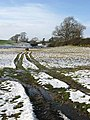 Farmland near Faughhill - geograph.org.uk - 649800.jpg
