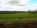Farmland near Stroodland Barn - geograph.org.uk - 151010.jpg