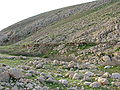 Fatzael Springs and water system 034.JPG