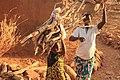 Femmes au champ à Tanlili - Burkina Faso.jpg