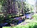 Fichtelnaab - panoramio.jpg