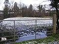 Field at Cranny - geograph.org.uk - 1130969.jpg
