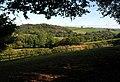 Field by Deepleigh Lane - geograph.org.uk - 1517774.jpg