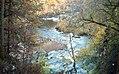 Findhorn Gorge, Moray (200577) (9461604823).jpg