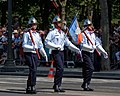 Fire brigades Bastille Day 2013 Paris t111948.jpg