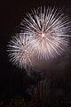 Fireworks - July 4, 2010 (4773764114).jpg
